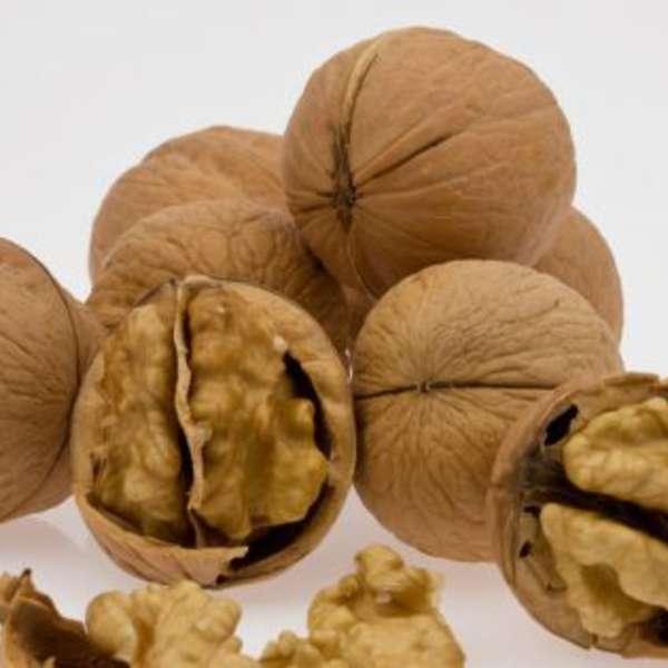 Bild zum Eintrag: Nüsse: Harte Schale, gesunder Kern